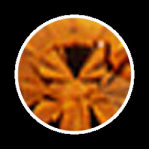 Swarovski Strass 100 Stück- caramel