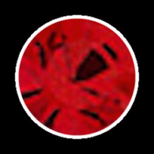 Swarovski Strass 100 Stück- rot
