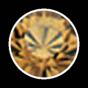 Swarovski Strass 100 Stück- champagner